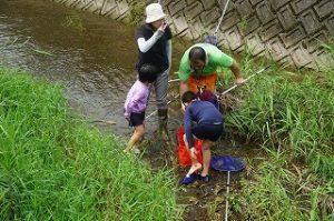 魚とりをする子供たち