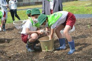 水やりする児童